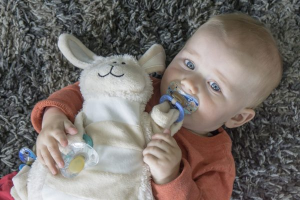 Moonlight Baby Sleep Consultant Melbourne - sleepytot comforting toy with dummies